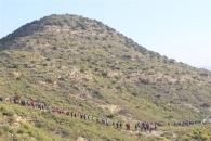 Más de trescientos participantes en la VI Marcha Senderista de Rojales